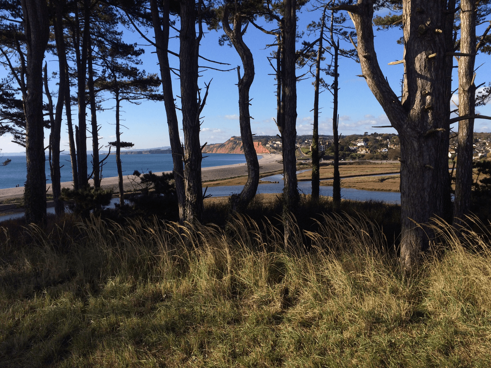 Budleigh Salterton, nearing the end of the 100 km run
